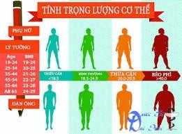 Công cụ tính BMI (Body Mass Index) để biết mập hay ốm