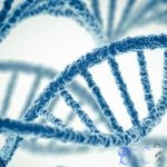 Biến thể gen bảo vệ phụ nữ khỏi chứng lạc nội mạc tử cung