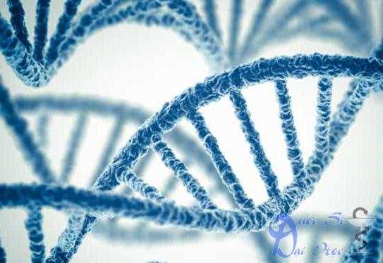 biến thể gen
